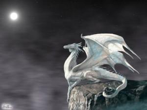11 dragon blanco