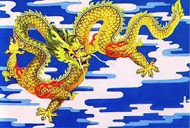 48 dragon huanglog